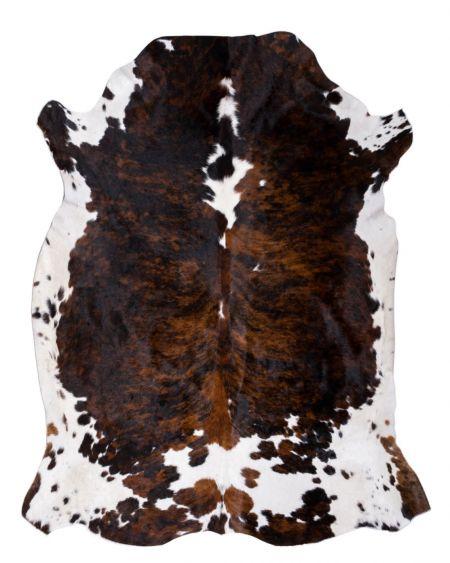 Piel de Toro Normando/ Normand Cow